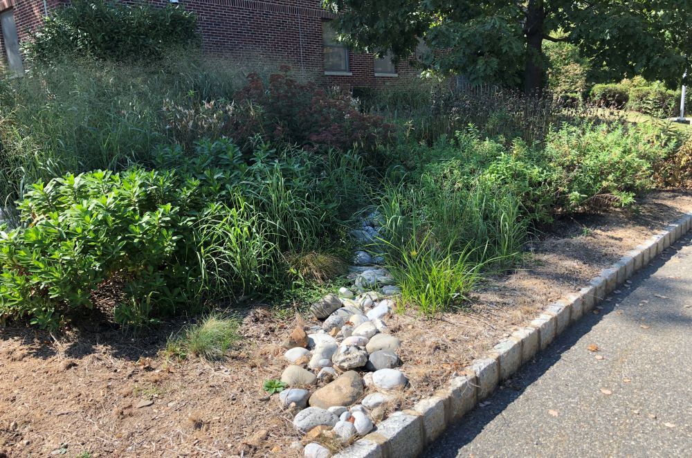 Stormwater Management Events Photo Link